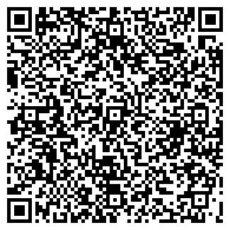 QR-код с контактной информацией организации ООО WISSON