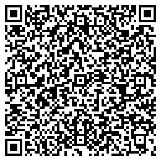 QR-код с контактной информацией организации ЛИС+, ООО