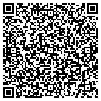 QR-код с контактной информацией организации ДИСКОМАНИЯ МАГАЗИН