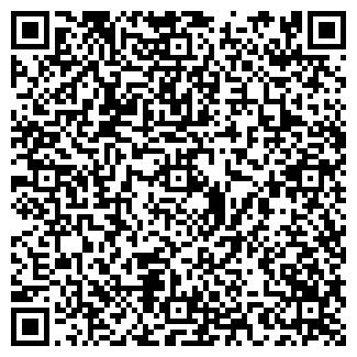 QR-код с контактной информацией организации ООО « Галактика»