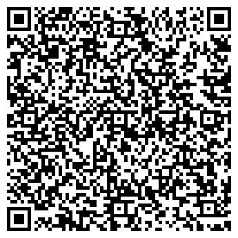 QR-код с контактной информацией организации ДИЛАЙН СЕРВИС ОСОО