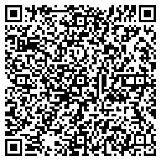 QR-код с контактной информацией организации ГОМЕР, ООО