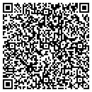 QR-код с контактной информацией организации ИП ГАЗИЗОВ Э.З.