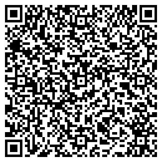 QR-код с контактной информацией организации РУДНОЕ