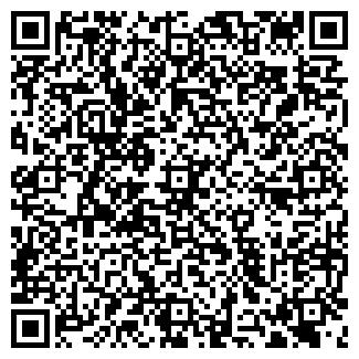 QR-код с контактной информацией организации ИШИМСКИЙ