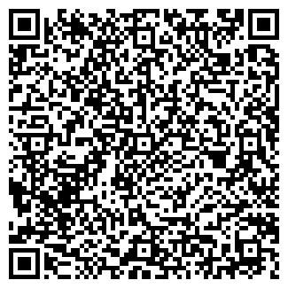 QR-код с контактной информацией организации РОСТО (ДОСААФ) КАСЛИНСКАЯ ГОРОДСКАЯ ОРГАНИЗАЦИЯ