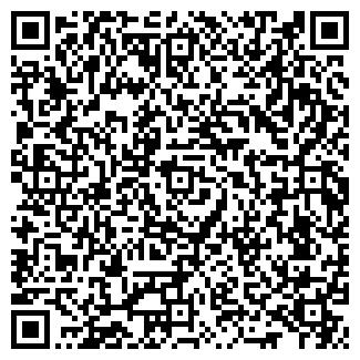 QR-код с контактной информацией организации БОРОДИНА, ИП