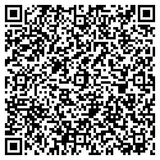QR-код с контактной информацией организации ДИШАС, ООО