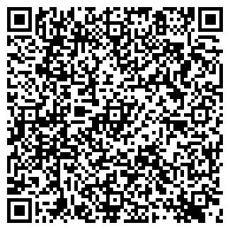 QR-код с контактной информацией организации ДСМ, ООО