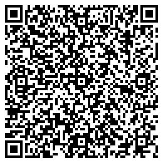 QR-код с контактной информацией организации БОРОВИК