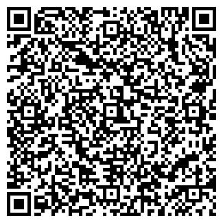QR-код с контактной информацией организации РОМАШКА ЗАО