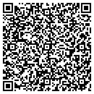 QR-код с контактной информацией организации ТИЗОЛ, ОАО
