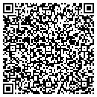 QR-код с контактной информацией организации ИП БЕЛОУС