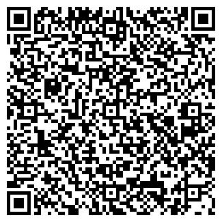 QR-код с контактной информацией организации БЫСТРИНСКИЙ, ООО