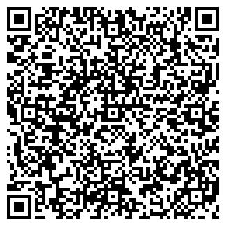 QR-код с контактной информацией организации ВИКИНГ, ЦТО, ООО