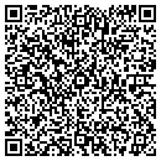 QR-код с контактной информацией организации ЧЕРЕМИССКОЕ