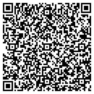 QR-код с контактной информацией организации ДИСЕМ СТИЛЬ