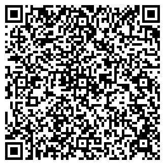 QR-код с контактной информацией организации ООО СНЕЖИНКА