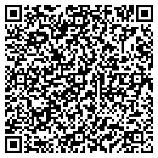 QR-код с контактной информацией организации РАДОНЕЖ ТД