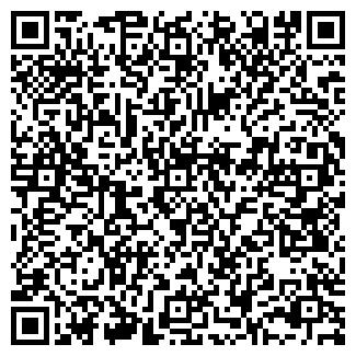 QR-код с контактной информацией организации СИБФИН ФИРМА