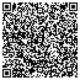 QR-код с контактной информацией организации СИБИНС ООО
