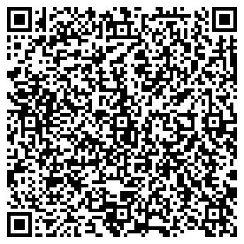 QR-код с контактной информацией организации СИСТЕМЫ БЕЗОПАСНОСТИ ФИРМА