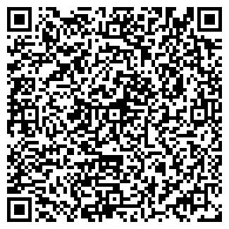QR-код с контактной информацией организации ВИК