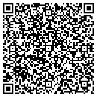 QR-код с контактной информацией организации ШИШКОВ ТД