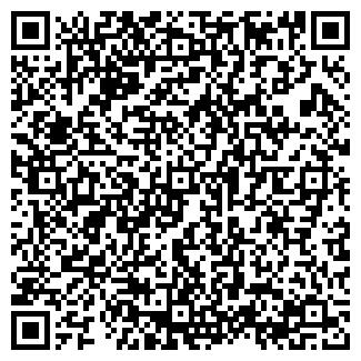 QR-код с контактной информацией организации ИП ДРЕМИНА