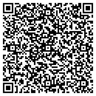 QR-код с контактной информацией организации КИСЕЛЕВ В.В.