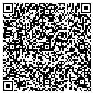 QR-код с контактной информацией организации ООО ВИРИЛИС