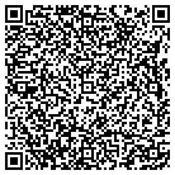 QR-код с контактной информацией организации ИП ВОЛКОВ В.В.