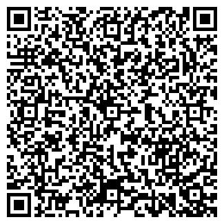 QR-код с контактной информацией организации ДИДЕМА ООО