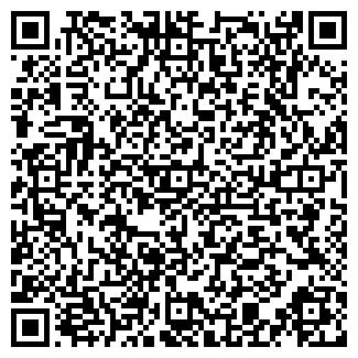 QR-код с контактной информацией организации ИЛСИ ООО