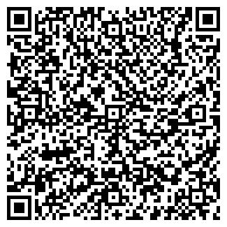 QR-код с контактной информацией организации ИП ВАСЯНИНА