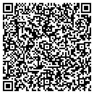 QR-код с контактной информацией организации ИП МАНУИЛОВА