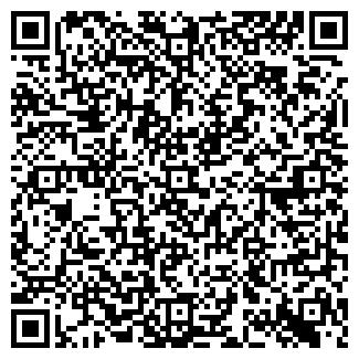 QR-код с контактной информацией организации ООО ТАЙМЛЕСС