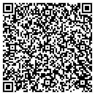 QR-код с контактной информацией организации DD COLOR