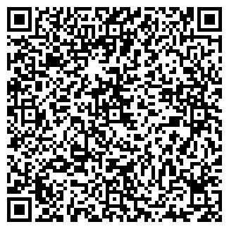 QR-код с контактной информацией организации ЭЛВЕС, ООО
