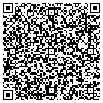 QR-код с контактной информацией организации ВИКИНГ НПП, ООО
