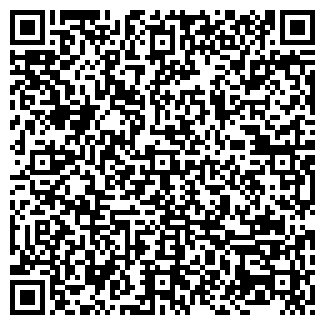 QR-код с контактной информацией организации БИГ-БИ