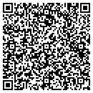QR-код с контактной информацией организации ДЖУНГЛИ, ИП