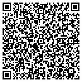 QR-код с контактной информацией организации ВЭЛС ТТЦ, ОАО