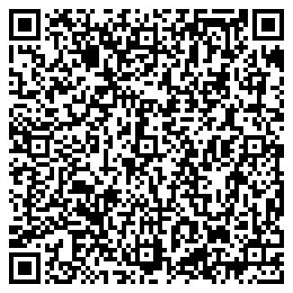 QR-код с контактной информацией организации ООО МАГИС