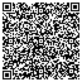 QR-код с контактной информацией организации ЛМ СЕРВИС