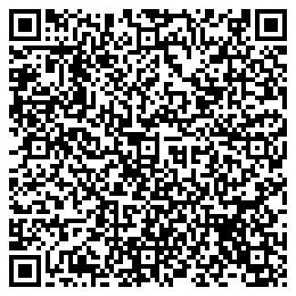 QR-код с контактной информацией организации ИП 12 СТУЛЬЕВ