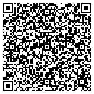 QR-код с контактной информацией организации БИНОМ ТД