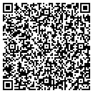 QR-код с контактной информацией организации ШИШКА