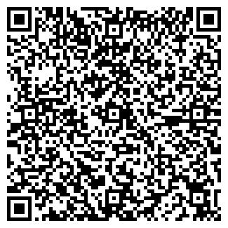 QR-код с контактной информацией организации ВАНЗУР, ООО