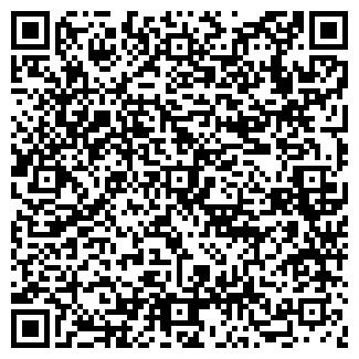 QR-код с контактной информацией организации ВОДНЕВ И Н. ИП